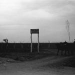 Tiraspol livada de ciresi Gheorghe
