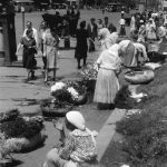Bucuresti 1941, Tiganci florarese pe bulevardul Bratianu Staatsarchiv Freiburg W 134 Nr. 033226b