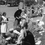 Bucuresti 1941, Tiganci florarese pe bulevardul Bratianu Staatsarchiv Freiburg W 134 Nr. 033226c