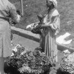 Bucuresti 1941, Tiganci florarese pe bulevardul Bratianu Staatsarchiv Freiburg W 134 Nr. 033226e